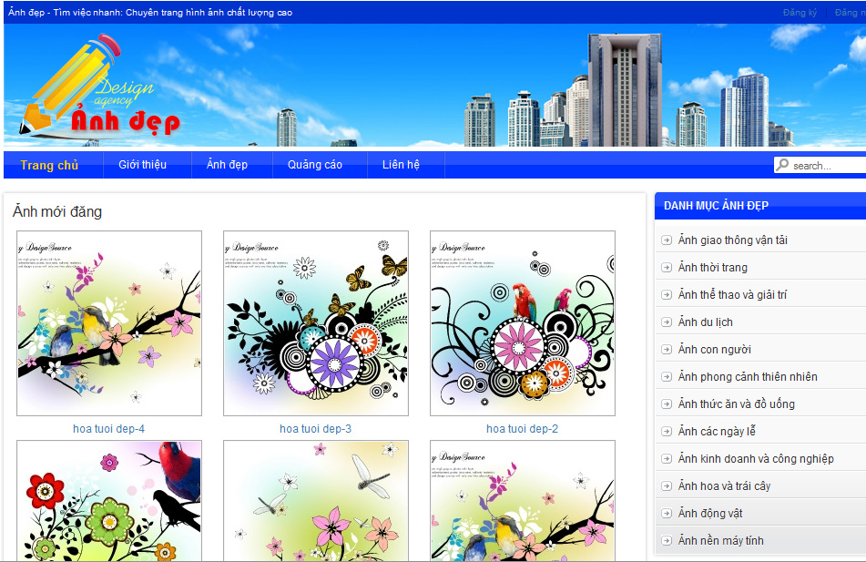 su anh huong ve hinh anh cho website
